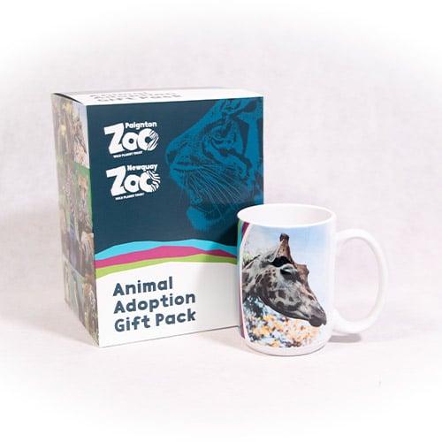 Giraffe adult adoption box