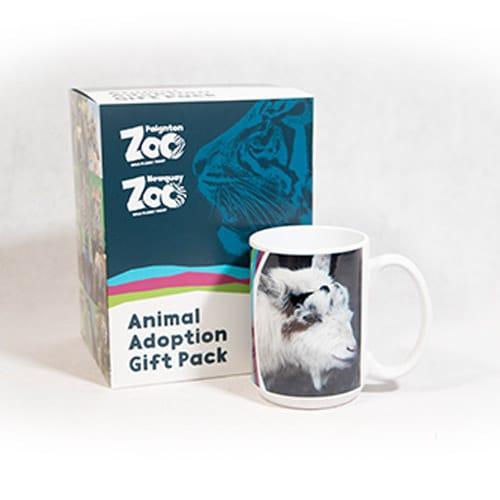 Goat adult adoption box