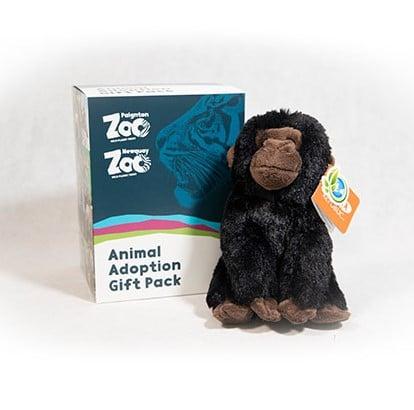 Gorilla junior adoption box