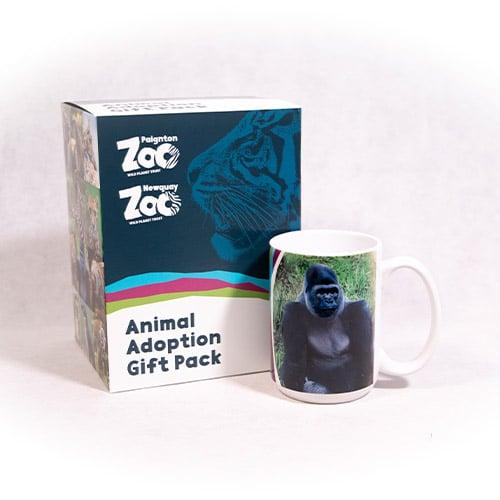 Gorilla adult adoption box