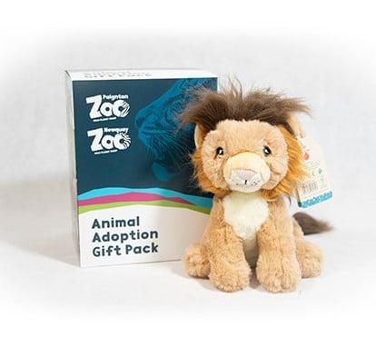 Lion junior adoption box