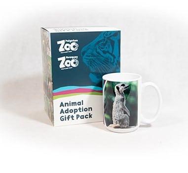 Meerkat adult adoption box