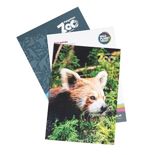 Red panda standard adoption pack