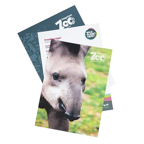 Tapir standard adoption pack