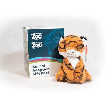Tiger junior adoption box