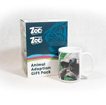 Giant tortoise adult adoption box