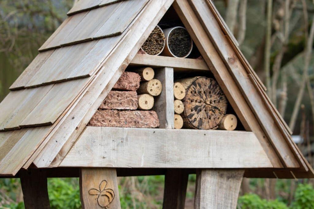 New bee hotel at Paignton Zoo