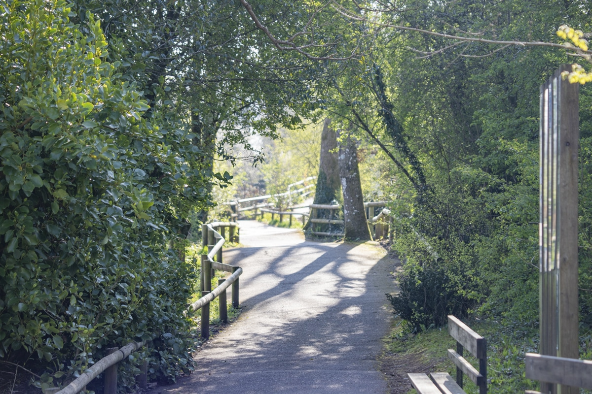 Pathway route at Paignton Zoo