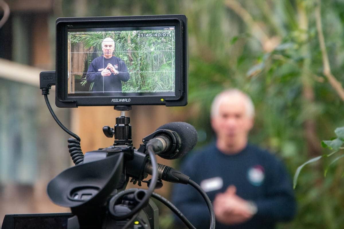 Camera filming at Paignton Zoo